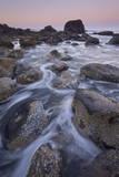 Rocks and Sea Stacks at Dawn  Ecola State Park  Oregon  United States of America  North America
