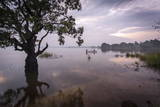 Fishermen Return at Dusk  Polonnaruwa Lake  Polonnaruwa  Sri Lanka  Asia