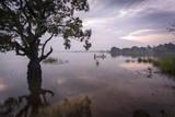 Fishermen Return at Dusk  Polonnaruwa Lake  Polonnaruwa  Sri Lanka  Asia