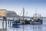 Fishing Boats on the Otago Peninsula  South Island  New Zealand  Pacific