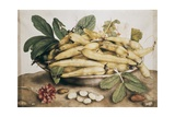 Still Life with Broad Bean