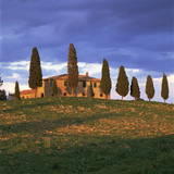 Farmhouse and Trees Near Pienza  Siena Province  Tuscany  Italy  Europe