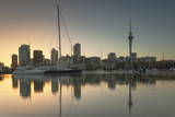 Sky Tower and Viaduct Harbour at Dawn  Auckland  North Island  New Zealand  Pacific
