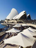 Sydney Opera House  UNESCO World Heritage Site  Sydney  New South Wales  Australia