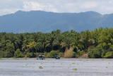 Sierpe River  Osa Peninsula  Costa Rica  Central America