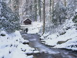 Cottage in a Forest in Winter