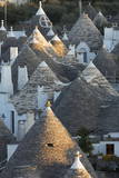 Rooftops of Traditional Trullos (Trulli) in Alberobello