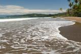 Osa Peninsula  Costa Rica  Central America