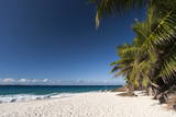 Anse Victorin  Fregate Island  Seychelles  Indian Ocean  Africa