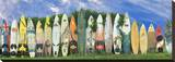 Surfboard Fence