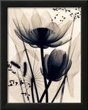 Lotus and Grasses