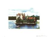 Rhine Chateau