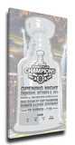 Boston Bruins 2011 Stanley Cup Champions Banner Raising Mega Ticket