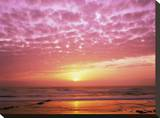 Pink Sunset over Heceta Beach  Oregon