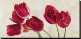 Tulip Concerto