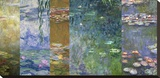 Waterlilies IV
