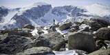 A Male Hiker on Froze to Death Plateau in the Absaroka Beartooth Wilderness  Montana