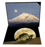 Winter View of Mt Shasta  California & Windswept Live Oak Tree and Rising Full Moon at Night Set