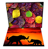 Multi-Colored Aspen Leaves with Rain Drop & Adult and Young Elephants  Sunset Light Set