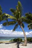Beautiful Beaches of Alphonse Island  Seychelles