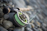 Close-Up of Fly Fishing Reel and Steelhead