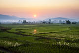 The Sun Sets Behind Foggy Hills and Expansive Rice Paddy Fields Near Chiang Mai  Thailand