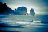 Olympic National Park  Wa: Surfers Brave the Cold Water of the Shore of La Push  Washington