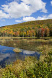 USA  Vermont  Burlington  Jericho Lake with Autumn Foliage