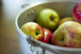 Apples in a Pail in Oregon
