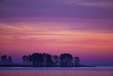 The Scenic Peninsula Against a the Pink and Purple Sky in Chesapeake Bay  Tilghman Island  Maryland