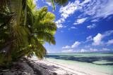 Beautiful Beach of Alphonse Island  Seychelles