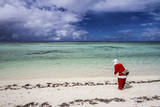 Santa Clause Patrols the Beaches of Alphonse Island for Feeding Fish