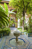 Garden of the 19th Century Bahia Palace  A Marrakech  Morocco
