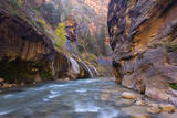 USA  Utah  Zion National Park the Narrows of the Virgin River