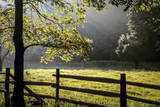 New Jersey  Hunterdon Co  Mountainville  Wooden Fence around a Meadow