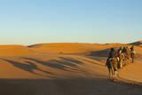Morocco  Merzouga Desert Caravan and Dromedaries