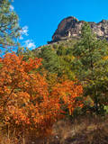 Usa Texas  Guadalupe Mountain  Mckittrick Canyon Hiking Trail