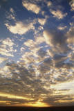 Kenya  Maasai Mara National Reserve  Cloud Pattern at Sunrise