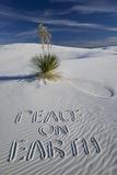 Peace on Earth Written in Sand