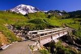 Mount Rainier and Footbridge