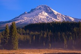 Mount Hood and National Forest