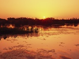 Sunset over Pond in Lake Woodruff National Wildlife Refuge