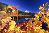 Fall Colors at Trillium Lake