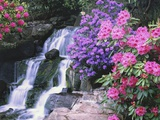 Waterfall in Crystal Springs Garden
