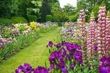 Schreiner Iris Gardens in Salem  Oregon