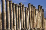 Columns of Cardo Maximus St Jerash  Jordan
