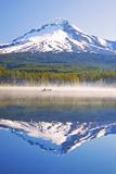 Reflection in Trillium Lake  Mt Hood  Oregon Cascades Pacific Northwest