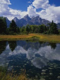 Shallow Pond Near Teton Range