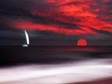White sailboat and red sunset Aluminium par Philippe Sainte-Laudy