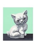 Mint Kitten